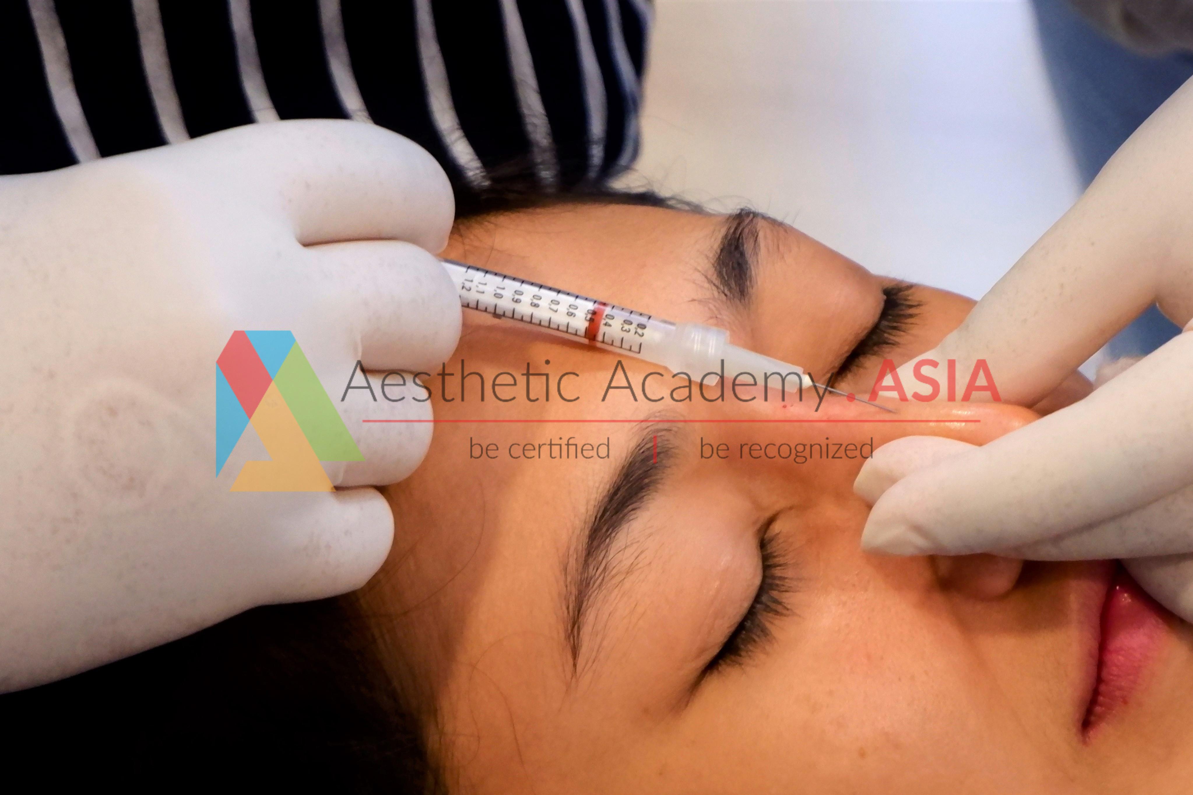 Nose Augmentation Training